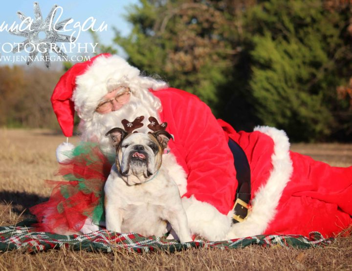 DFW Outdoor Pet Photography with Santa Claus