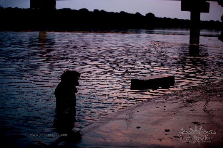 dog at sunset photo shoot at white rock lake dallas texas