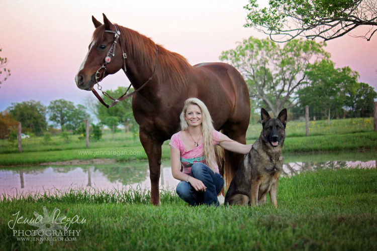 north texas equine photography