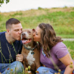 plano texas dog photo shoot