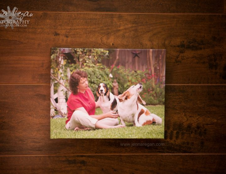A Peak Inside a Dog Photography Album | Dallas Pet Photography