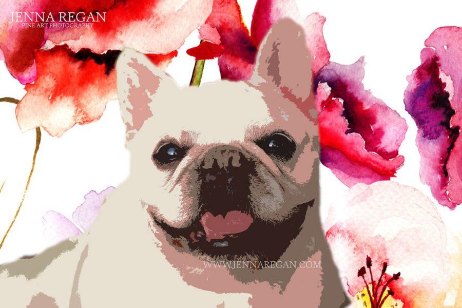 Custom Pop Art Pet Portraits