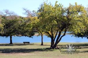 fall-photography-sherman-texas