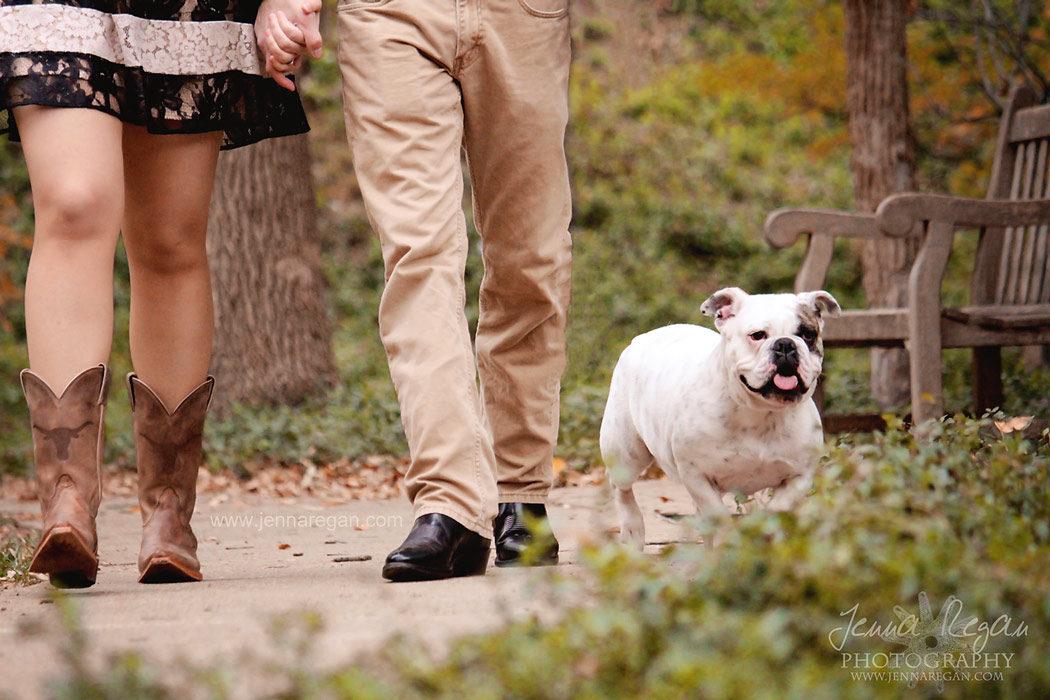 bulldog photo shoot highland park texas