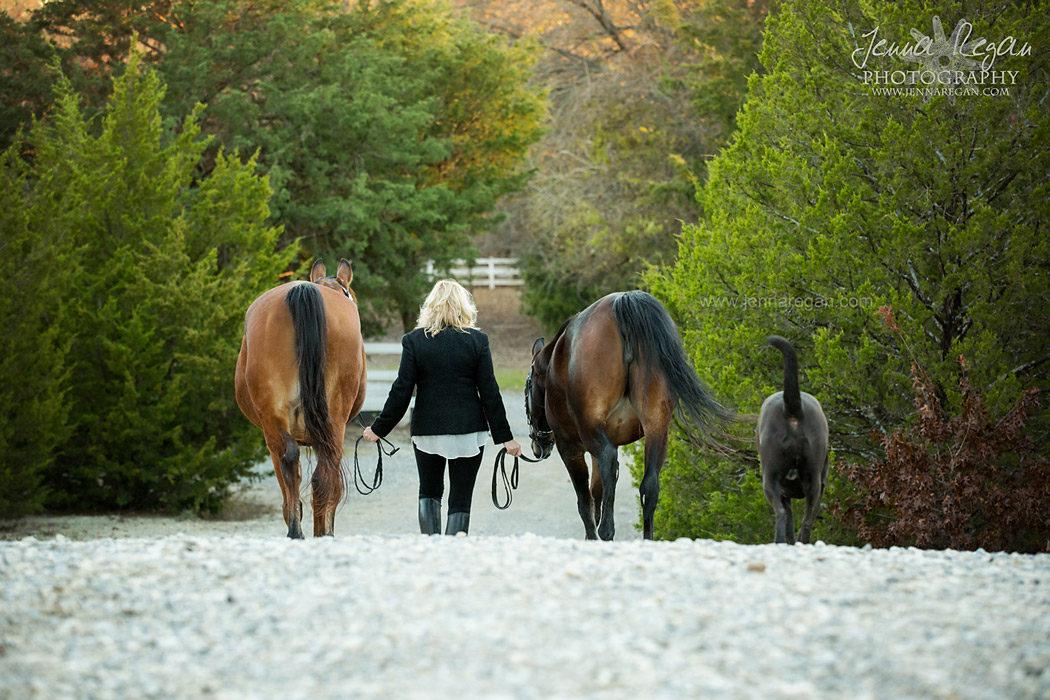mckinney texas equine photographer