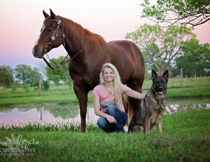 People, Cats, Dogs and Horses