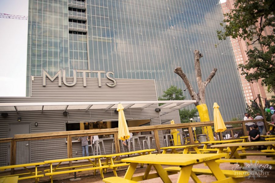 Dog Moms of Dallas Meet Up at Mutts Canine Cantina | June 2017