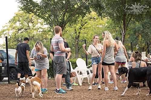group of dog moms talking at mutts canine cantina