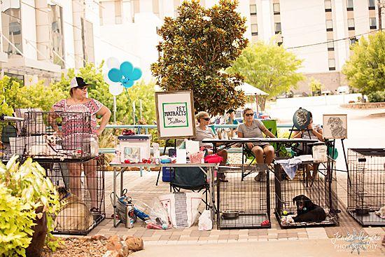 artist at dallas dog event