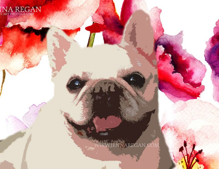 Custom Pop Art Pet Portraits