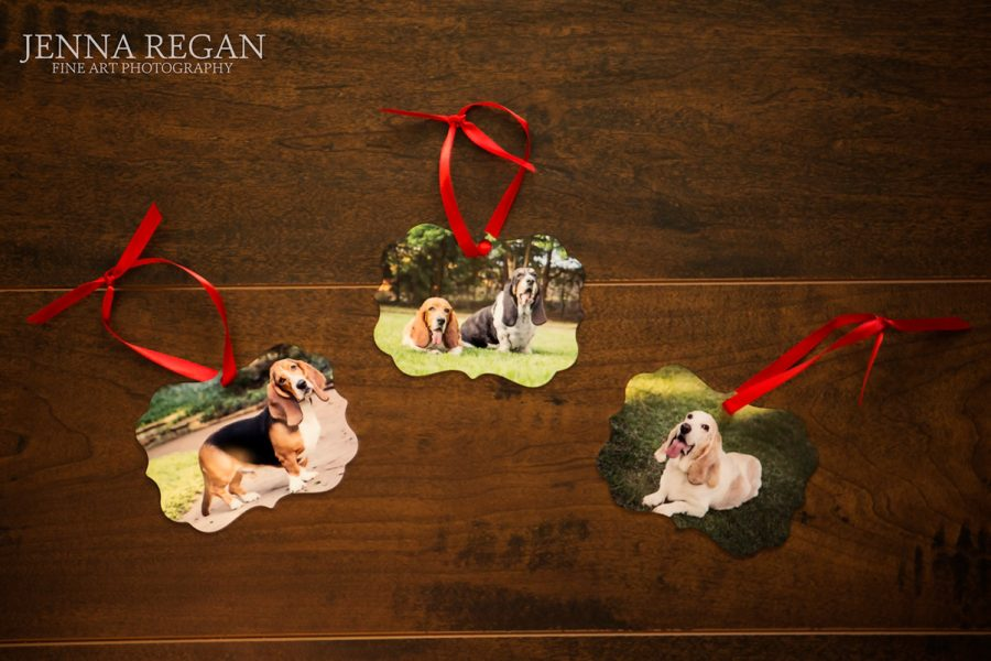 Custom Pet Photo Ornaments | Special Offering