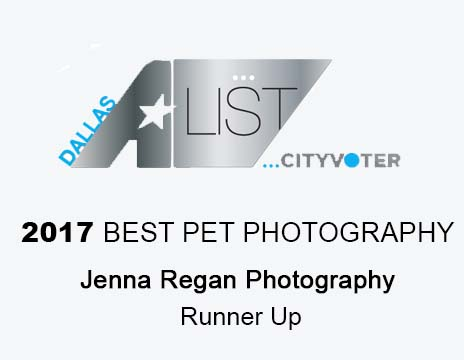 best pet photographers in dallas awards