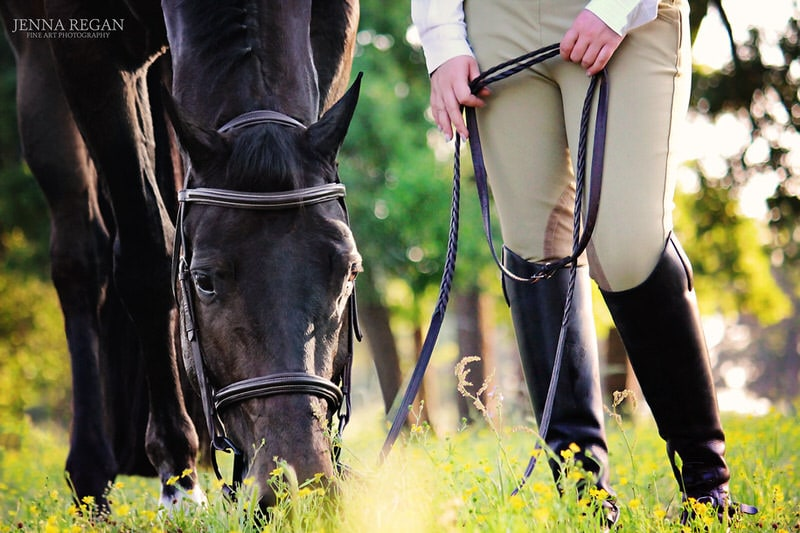 english equine photo shoot photo of woman's legs breeches horse head