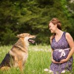 german shepherd and pregnant woman in field of wildflowers- dallas dog photo shoot- jenna regan photography