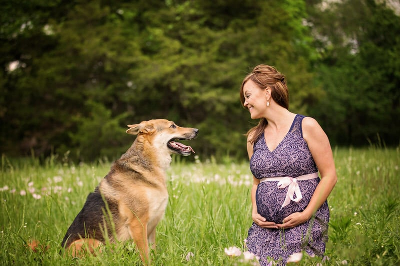 5 Reasons to Include your Dog in a Maternity Photo Session  | DFW Pet Photographer, Jenna Regan