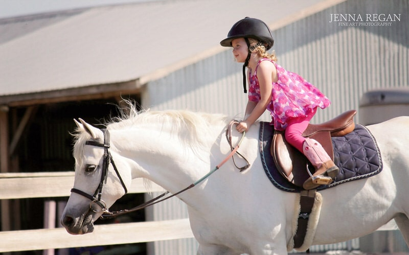 little equestrian girl wearing pink dress riding english on gray mare- north texas equine photography- jenna regan photography