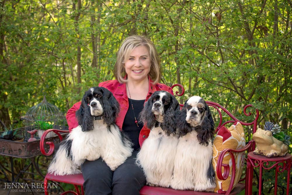 three cocker spaniels pose with woman on bench during outdoor dog photo shoot