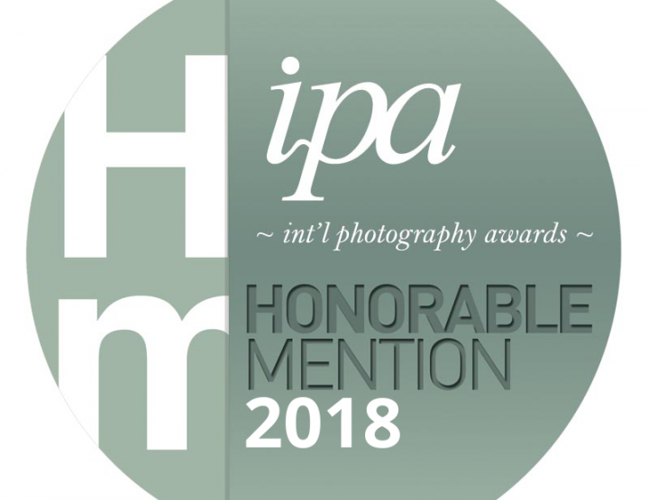 Press Release: Dallas Fort Worth Pet Photographer Jenna Regan Awarded in International Competition | October 2018