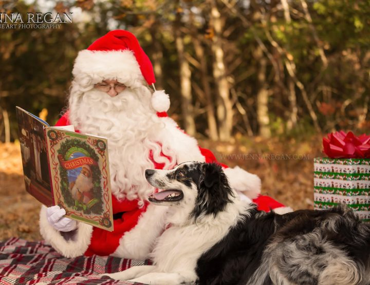 Pet Portraits with Santa 2018 | Dallas Pet Holiday Photos