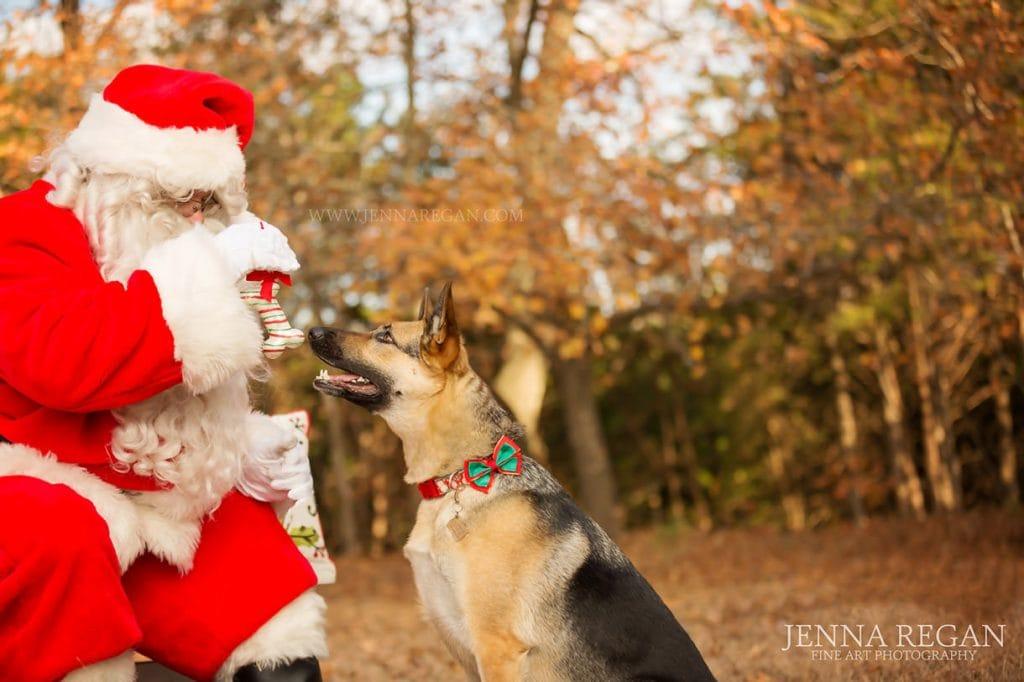 jenna-regan-pet-photography-with-santa