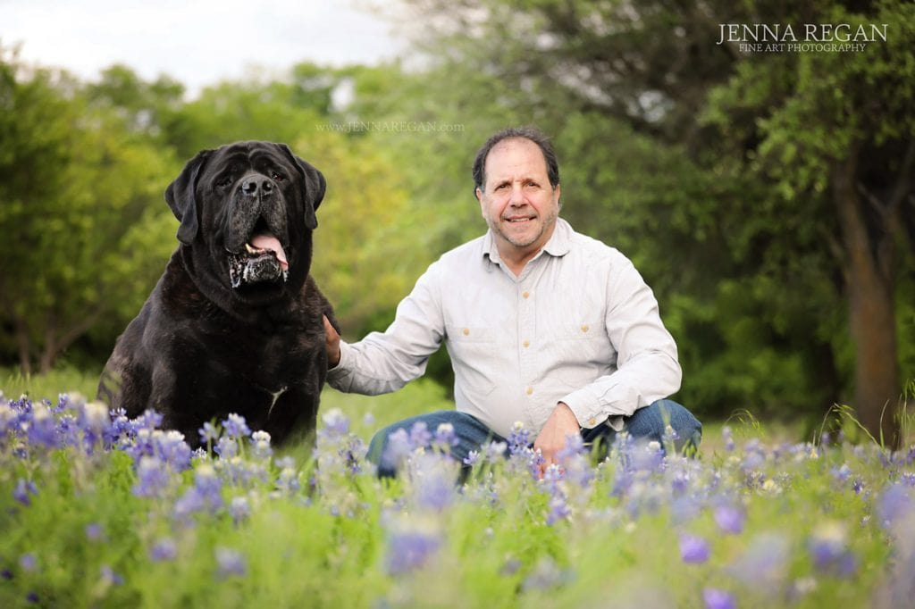 hank- dogs in bluebonnets jenna regan photography carrollton texas