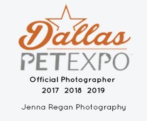 dallas-pet-expo-official-photographer