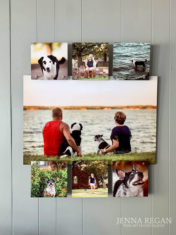 dallas pet photographer- artwork of pet photos- jenna regan photography (3)