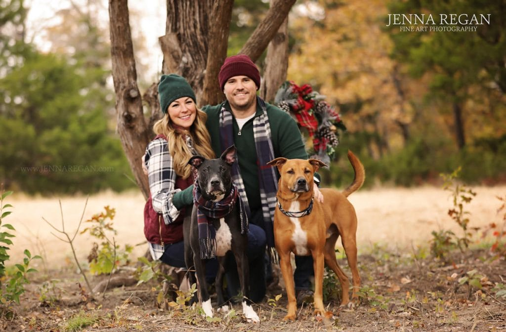 pit mix dogs outdoor family photo with dogs fall leaves jenna regan photography