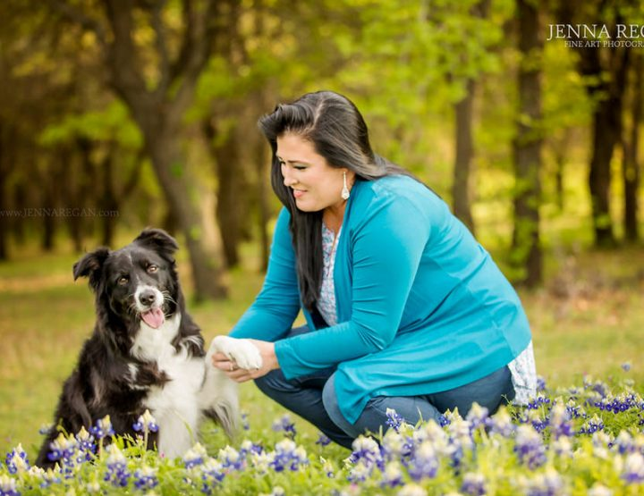 Spring Bluebonnet Pet Photography Sessions  | Dallas, Fort Worth, North Texas
